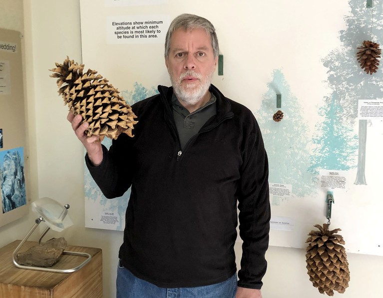 Bob with Coulter Pine Cone